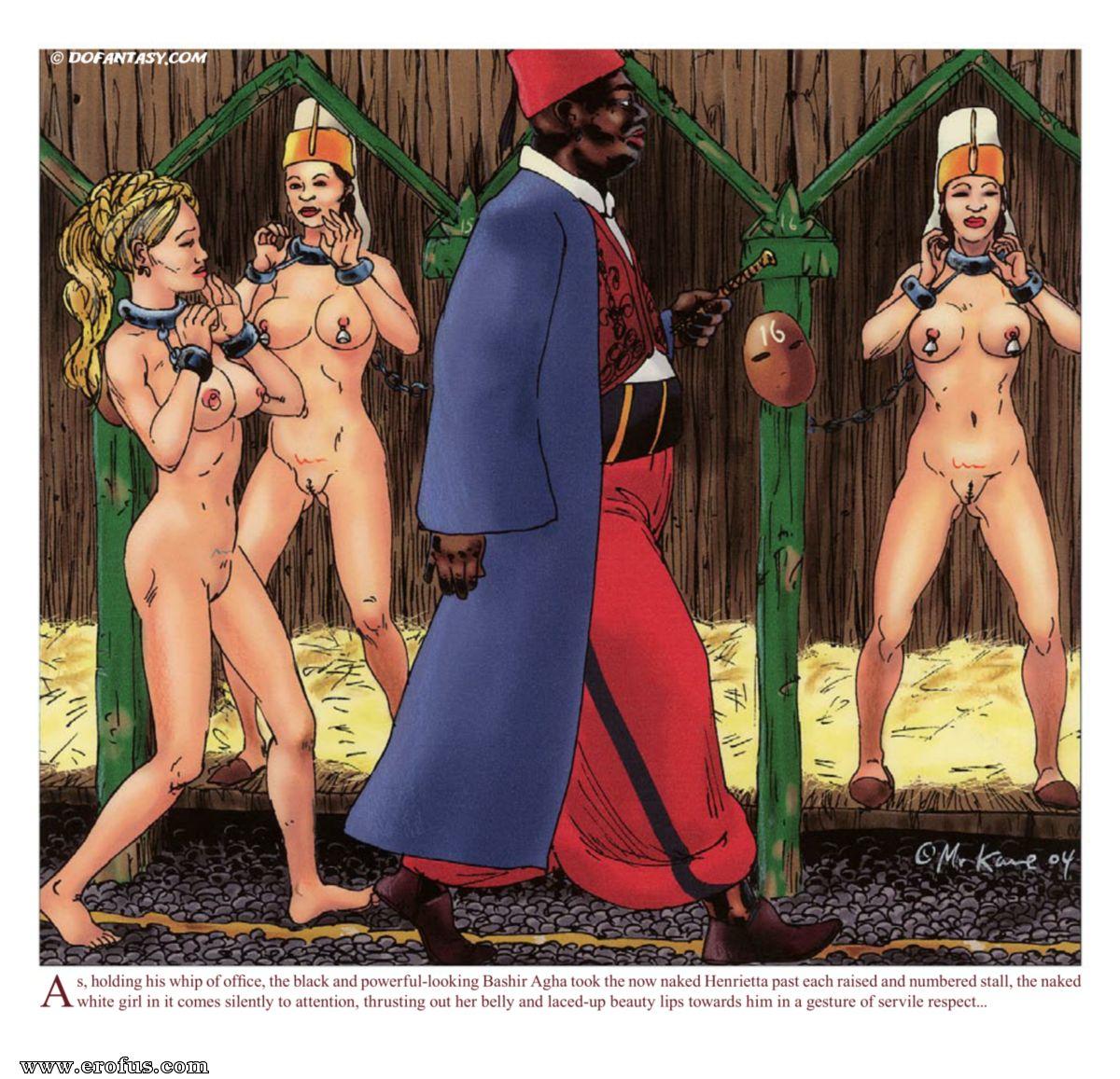 Femdom toilet slave cartoons