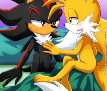 Shadow & Tails